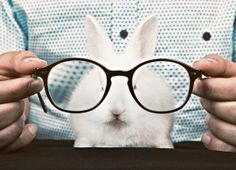 bunnys with glasses. whats next kitty wristwatches?