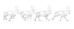 Reindeer Run, Creature Design, Various Artists, Cartoon Characters, Moose Art, Character Design, Join, Creatures, Sketches