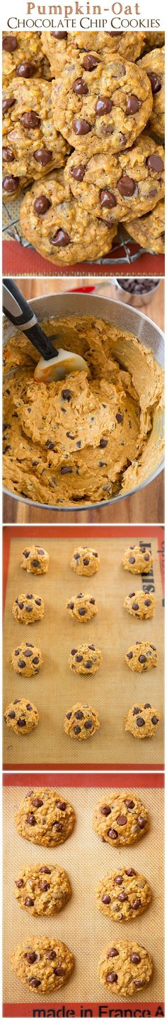 dessert - Pumpkin-Oat Chocolate Chip Cookies - these are my new favorite pumpkin cookies! They're completely irresistible! Just Desserts, Delicious Desserts, Yummy Food, Tasty, Fall Desserts, Oat Chocolate Chip Cookies, Chocolate Chips, Oatmeal Cookies, Oatmeal Bars
