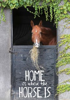 Home is where the horse is.