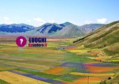 #castellucciodinorcia #norcia #umbria #fioritura #fiorita #italia #italy  http://luoghidavedere.it/luoghi-da-vedere-in-italia/cosa-vedere-in-umbria/la-fioritura-di-castelluccio-di-norcia-uno-spettacolo-naturale-senza-eguali_1505