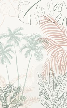 Sink into a dreamy plant paradise with Soothe – our minimalist tropical wallpaper mural. This design is full of inky hand-drawn details in a soft cream, pink, and green colour palette. The serene selection of banana trees, Areca palms, Caladium plants, Monstera leaves and more, will frame your feature wall with beautiful large-scale foliage and transform your living room, bedroom, or bathroom. Pastel Color Wallpaper, Pink Wallpaper Backgrounds, Iphone Wallpaper Sky, World Map Wallpaper, Plant Wallpaper, Tropical Wallpaper, Forest Wallpaper, Colorful Wallpaper, Minimalist Wallpaper Phone