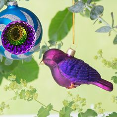 Blue & Pink Finch Decorations | Designers Guild USA