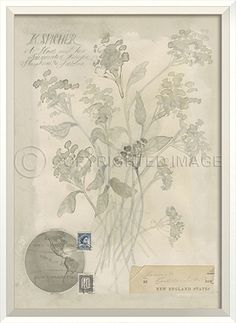 WC Flowers New England States by Spicher&Co.