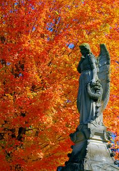 Autumn Angel in Asheville, NC - fall color in Riverside Cemetery