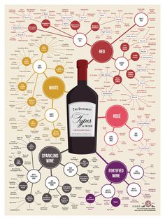 The different types of wine, by style and color. Oh so many wines! Oh so little time!