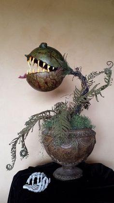 Carnivorous plant pr
