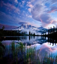 """Beautiful Places/ Rainier National Park, Washington """"In every walk with nature one receives far more than he seeks. Beautiful World, Beautiful Places, Beautiful Pictures, Simply Beautiful, Beautiful Sky, Amazing Places, Absolutely Stunning, Pretty Sky, Beautiful Nature Images"""