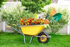 wheelbarrow-planter-05