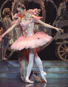 Beautiful tutu - Cinderella going to the ball ♥ Wonderful!  www.thewonderfulworldofdance.com