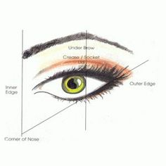 Here's how to make your eyes look bigger and more awake. These simple makeup tips will have your eyes looking like baby doll eyes in no time. Here's how to apply eyeliner and shadow to get the results you want. Simple Makeup Tips, Eye Makeup Tips, Hair Makeup, Makeup Tricks, Makeup Guide, Makeup Box, Makeup Tools, Makeup Ideas, Beauty Make Up