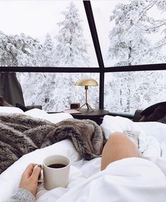 Finland's Luxury Igloos Allow You To Sleep And Stargaze Under The Northern Lig… - winter decor Beautiful World, Beautiful Places, Christmas Aesthetic, Winter Christmas, Hygge Christmas, Christmas Tree, Natural Christmas, Gold Christmas, Simple Christmas