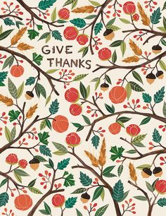 I am humbled and thankful and go to bed each night overwhelmed with a full heart. I give thanks every day for my blessings.