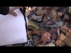 Composting Toilet, the Graphic Version - YouTube