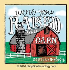 Raised in a Barn | southernology.com Funny Southern Sayings, Southern Quotes, Country Girl Quotes, Southern Pride, Southern Women, Southern Phrases, Country Sayings, Simply Southern, Southern Charm