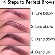 Easy 4 step to perfect browsss I recommend using a Mac spiked eyebrow pencil or a NYX Micro Brow Pencil to lightly sketch out the lower eyebrow Easiest guide in my opinion Eyebrow Makeup Tips Eyebrow Makeup Tips, Skin Makeup, Makeup Eyebrows, How To Eyebrows, Nice Eyebrows, Eyeshadow Makeup, Filling In Eyebrows, Natural Eyebrows, Eyebrow Brush