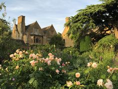 Sisley Garden Tours Cotswolds Highlights with Chelsea Flower Show - Sunday May - Saturday May 2020 nights). Experience the RHS Chelsea Flower Show and many stunning private gardens on this small group garden tour.