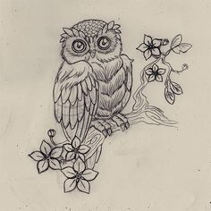 owl on branch drawing - Google Search