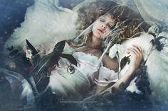 Sleeping Beauty - Find me on Facebook: Amanda Diaz Photography