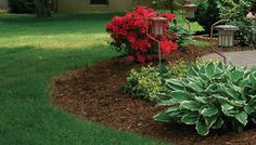 Keep mulch away from your house. placed against the foundation provides an entrance way for ants and other insects to get into the house. Be sure to keep a space between the foundation and the mulch. Landscaping Supplies, Landscaping Tips, Front Yard Landscaping, Hillside Landscaping, Succulent Landscaping, Farmhouse Landscaping, Garden Mulch, Lawn And Garden, Landscape Design