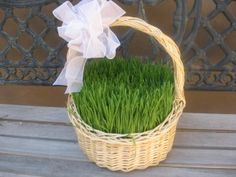 I am SO growing our own Easter grass next year!  In fact, I've already got it on my calender, and it's set to remind me 3 weeks early lol!