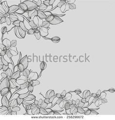 Gray background with dark gray graphical now orchids. Vector illustration. For cards and invitations - stock vector
