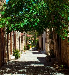 From natural sceneries and scenic landscapes we've gathered the five best villages to visit in Cyprus that will leave you in awe. Places To Travel, Places To Go, North Cyprus, Limassol, Paradise On Earth, Natural Scenery, Beautiful Islands, Greece, Landscape
