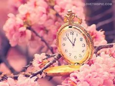 Spring Time spring cherry blossoms clock