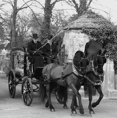 Funeral carriage. Heritage Funeral Homes, Crematory and Memorial Parks, Arizona