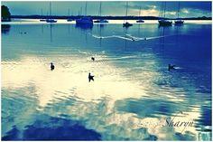 @ Lake Macquarie