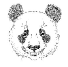 Panda 4.0  http://www.justsearch.fr/blog/panda-4-6800.html