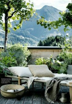 serene outdoor space