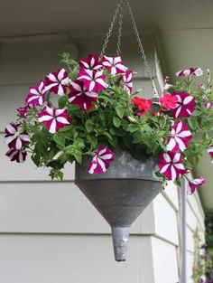 Funnel planter, photo: Laurie Guadino on Flowers Container Flowers, Flower Planters, Container Plants, Container Gardening, Flower Pots, Rustic Gardens, Unique Gardens, Amazing Gardens, Outdoor Gardens