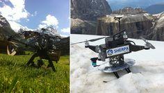 sherpa wasp cobot