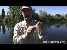 Advanced Spinnerbait Fishing   Bass Fishing - YouTube