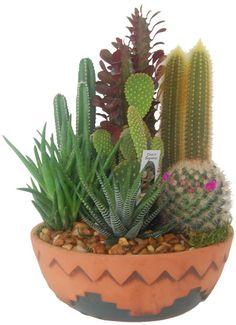 Medium Cactus Garden SouthWest Theme Perfect Table