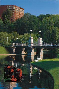 1000 Images About Boston On Pinterest Boston Massachusetts John Hancock Tower And Public Garden