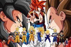 Vegeta & Goku - Dragonball Z & Dragonball GT