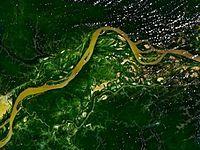 Forêt amazonienne — Wikipédia