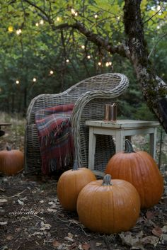 Fall-inspired outdoor living spaces that are ultra-cozy! (Image Courtesy of French Country Cottage) Indoor Outdoor Carpet, Vibeke Design, Autumn Aesthetic, French Country Cottage, Country Cottages, Country Charm, Diy Photo, Fall Harvest, Autumn Inspiration