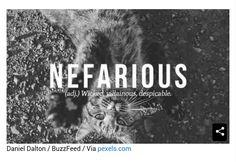 Nefarioud