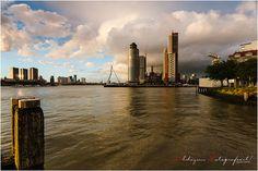 Crack the Shutter - Kop van Zuid (Rotterdam)