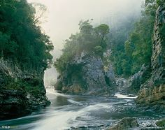 The iconic 'Rock Island Bend' image by Peter Dombrovskis