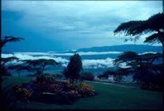 View from Eggardon Hill, Vumba, Rhodesia 1976