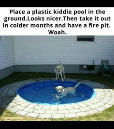 I know this shows it for dogs, but I thought this would be a good idea for our bigger pool. The tiles around it would be really nice so that we don't get grass in the pool when we get in. Kiddie Pool, Useful Life Hacks, Cool Ideas, First Home, My New Room, My Dream Home, Dream Barn, Future House, Future Mom