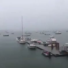 A dramatic moment was captured on video when lightning directly struck a sailboat in Boston Harbor at the Columbia Yacht Club. Funny Short Videos, Funny Video Memes, Wow Video, Wild Weather, Weird Gif, Lightning Strikes, Explosions, Natural Phenomena, Funny Clips