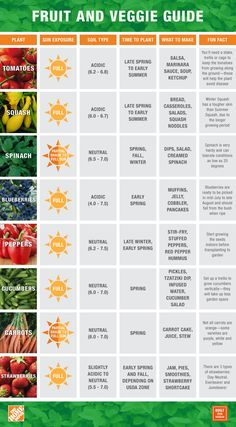 Eat What You Sow: BFS Fruit and Veggie Guide #ediblegarden #easygrowing http://builtfromscratch.homedepot.com/fruit-and-vegetable-guide-summer-2015/ #growfruitsandvegetables #whentoplant #gardengoodies #gardeninfographics #whattoplant #HomeDepot