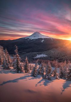 Mt Hood (Oregon) by Steve Schwindt