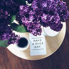 Coffee Milk, Milk Tea, Coffee Cafe, Pastel Purple, Morning Images, Coffee Break, Amazing Nature, Instagram Feed, Good Morning