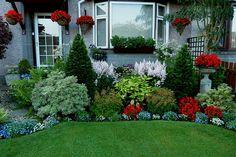 Front-garden-August-5th-17.jpg (1000×667)